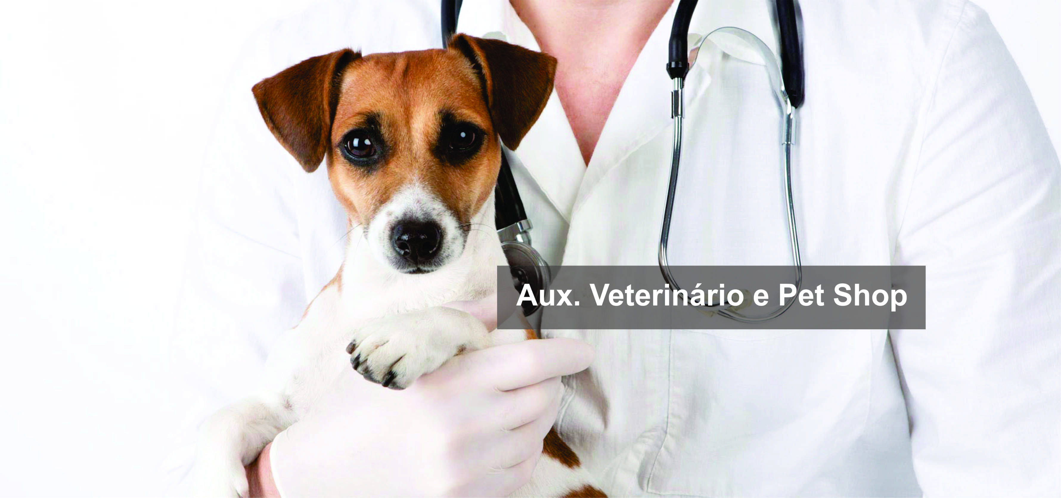 Aux. Vet. e Pet Shop